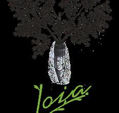 Nuovo corso professionalizzante di alta cucina vegetariana in collaborazione con la Joia Academy di Milano