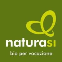 Logo-nsi-2015-quadrato-CMYK